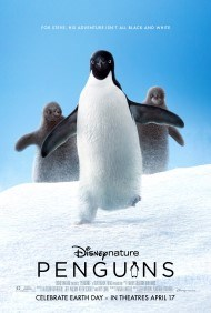 Bring the Baby: Penguins